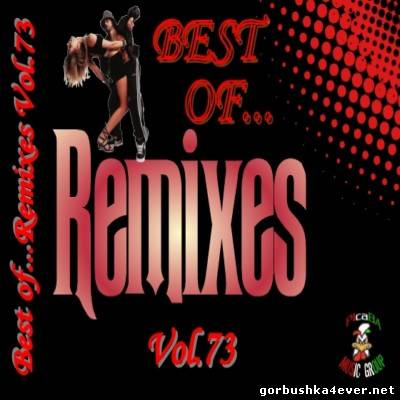 Best Of Remixes vol 73 [2013]