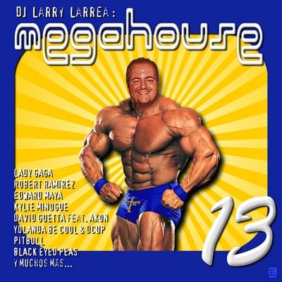 DJ Larry - Mega House Mix 13 [2010]