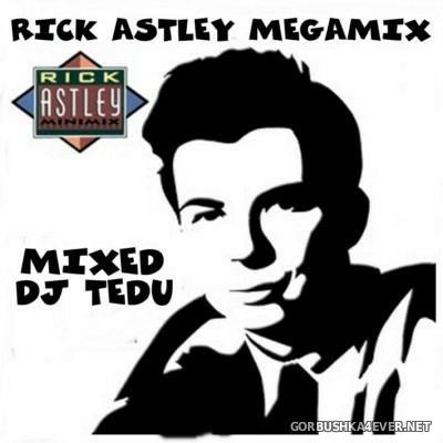 DJ Tedu - Rick Astley Megamix