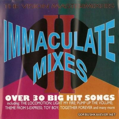 The Vision Mastermixers - Immaculate Mixes II