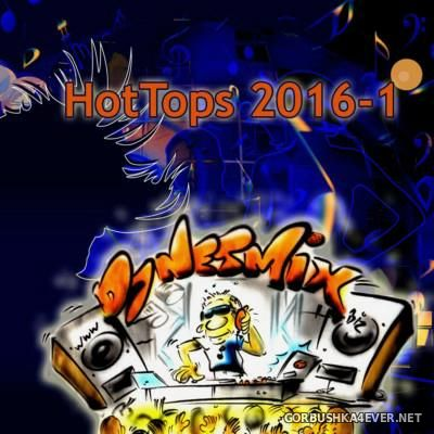 DJ Netmix - Hot Tops In The Mix 2016.1