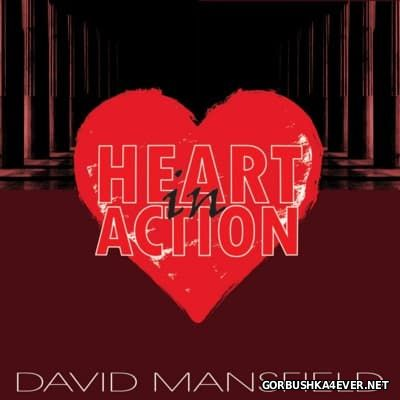 David Mansfield - Heart in Action [2016]