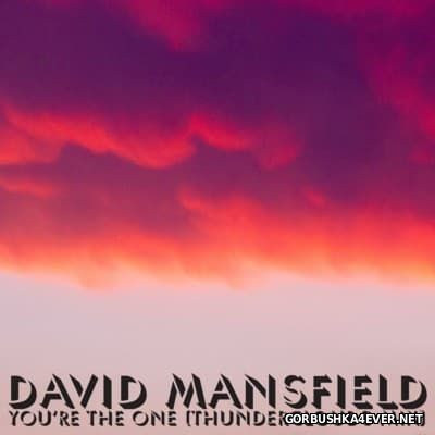 David Mansfield - You're The One (Thunderclouds Mix) [2016]