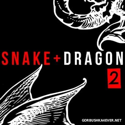 The TCR - Snake & Dragon 2 [2016]