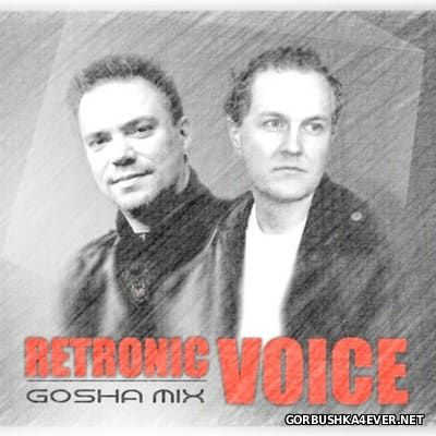 Retronic Voice - In The Mix [2016] by Gosha Mix
