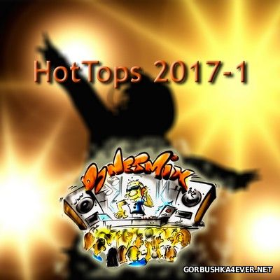 DJ Netmix - Hot Tops In The Mix 2017.1