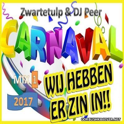 DJ Peer & Zwartetulp - Carnaval Mix 2017.1 [2016]
