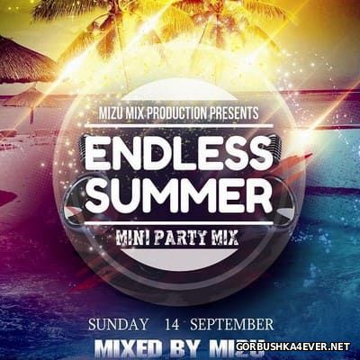 Endless Summer 2014 Mini Party Mix / Mixed by Mizu