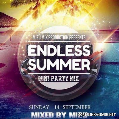 Endless Summer 2014 Mini Party Mix / Mixed by Mizu
