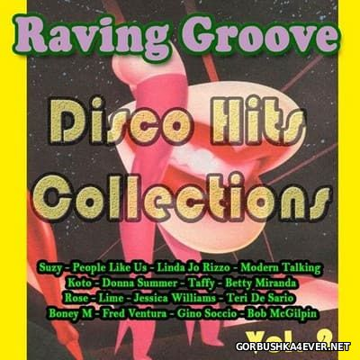 Raving Groove - Disco Hits Collection vol 2 [2017]