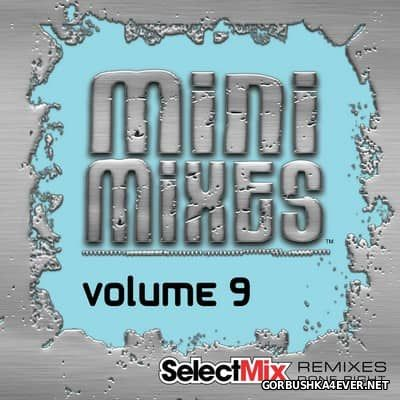 [Select Mix] Mini Mixes vol 9 [2017]