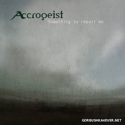 Accrogeist - Something To Repair Me [2016]