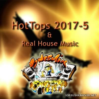 DJ Netmix - Hot Tops In The Mix 2017.5