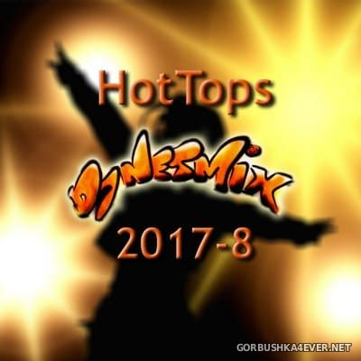 DJ Netmix - Hot Tops In The Mix 2017.8