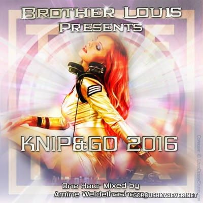 DJ Amine Weldelhashemy - Brother Louis Knip & Go Mix 2016