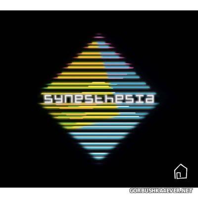 Raicher - Synesthesia [2018]