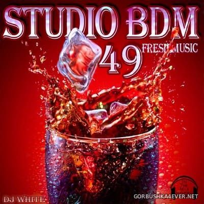 Bergischer Dance Mix vol 49 [2013]