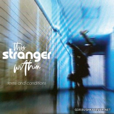 This Stranger Within - Terms And Conditions [2020]