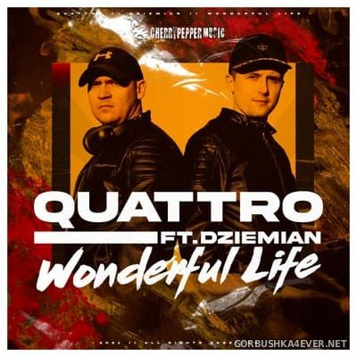 Quattro feat Dziemian - Wonderful Life [2021]