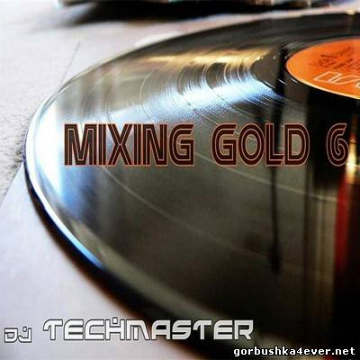 TechMaster DJ - Mixing Gold vol 06 [2013]