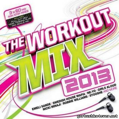 Workout Mix [2013] / 3xCD